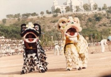 Lion Dance Performance at India
